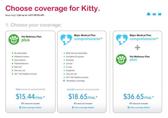 kitty-insurance